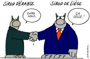 Geluck-le-chat-300x196