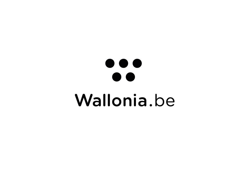 Lettre d'information Wallonie – Bruxelles à Québec Printemps 2015